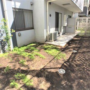 画像:庭2