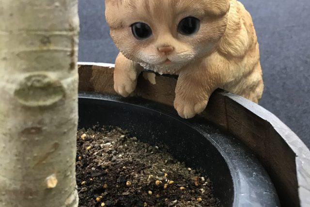 画像:猫の置物の鉢カバー
