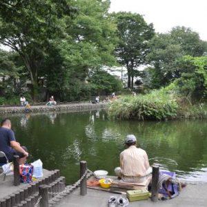 画像:赤塚溜池公園
