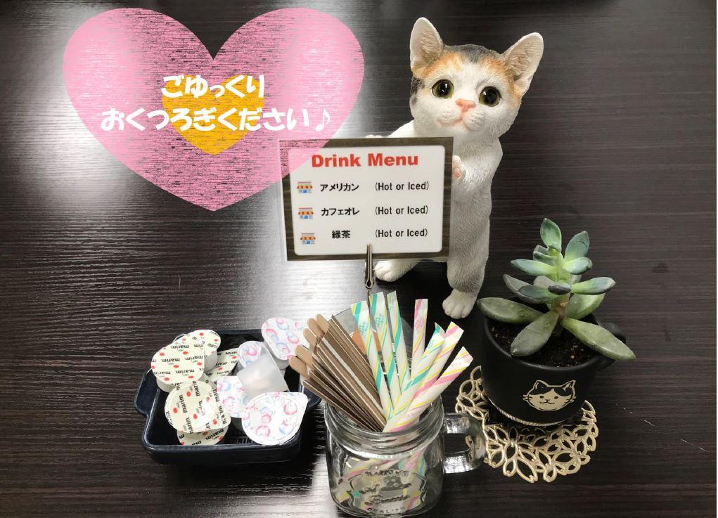 画像:猫の置物、ドリンクメニュー